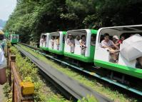 Zhangjiajie National Forest Park Tourist Train